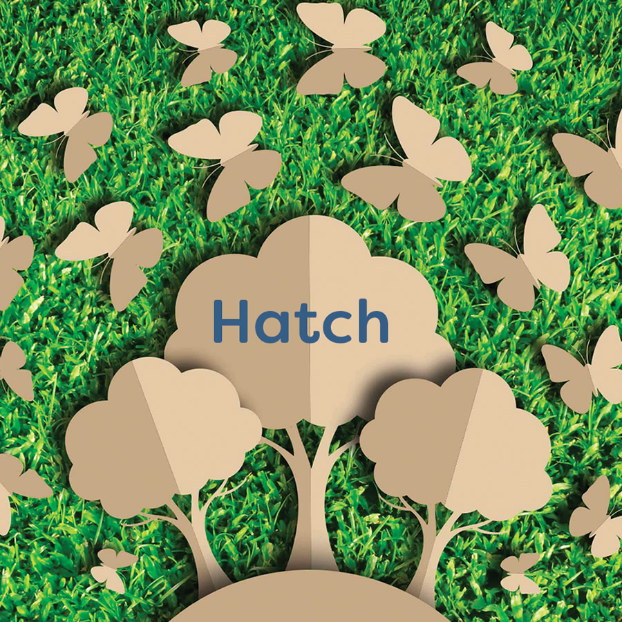 Hatch logo on a cardboard tree surrounded by cardboard butterflys.